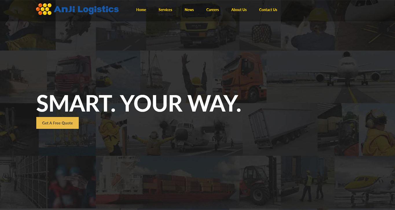 AnjiUSA Website Preview